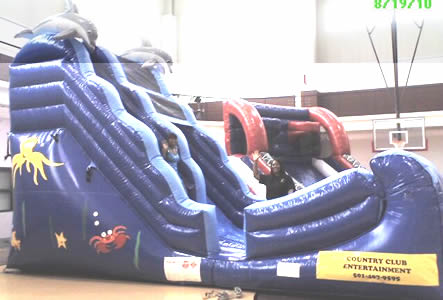 19 ft. Dolphine Slide